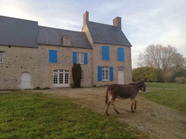 Norman Farmhouse / Tour de France
