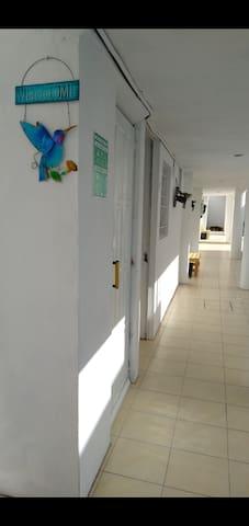 Hostal Alebrije en Puebla económico Room201