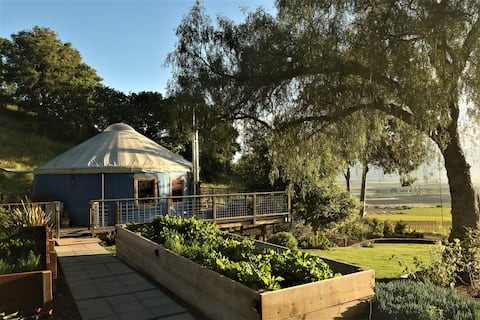 Yurt on the farm