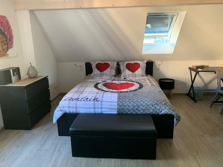 Au coeur de l'Alsace, joli appartement.