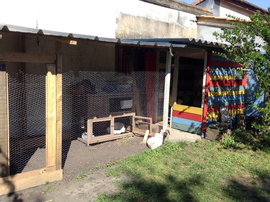 Enclos lapin et cabane des enfants