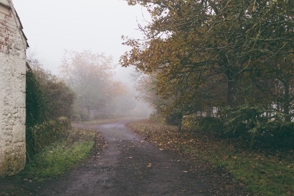 The drive into the farm is a council maintained, single track road