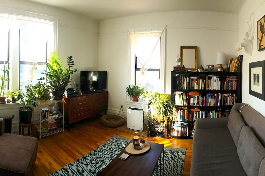 Wide shot of the living room