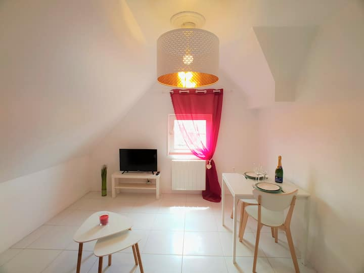 Au 36, Appartement hypercentre, vue ville p4