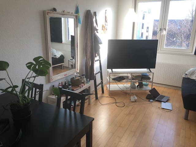 1 bedroom apartment in the heart of Nørrebro!