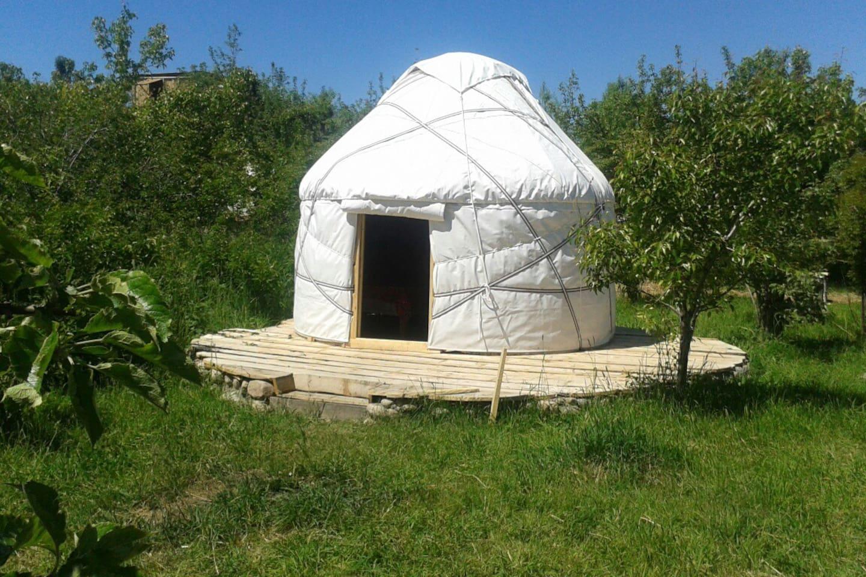 Bel-Zhan traditional Yurt