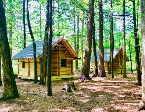 TimberTown Cabin #2