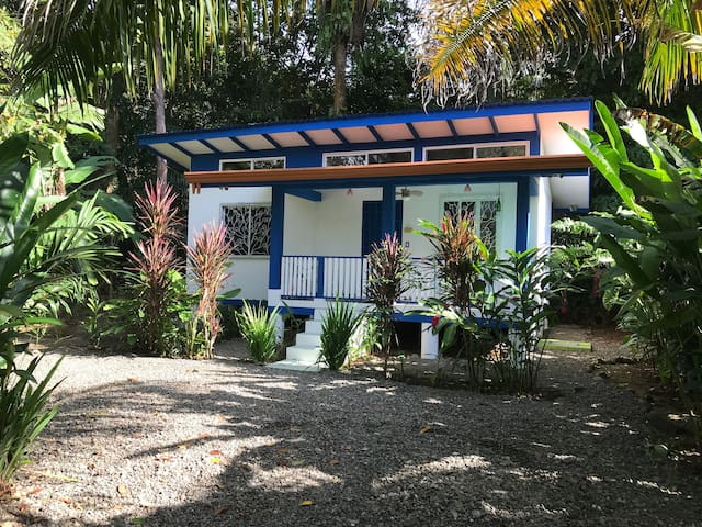 Casita Silvestre: cozy, jungle, beach and surf!