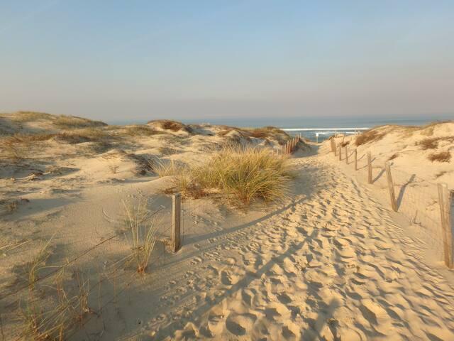 T3 avec véranda face à la dune, accès direct plage