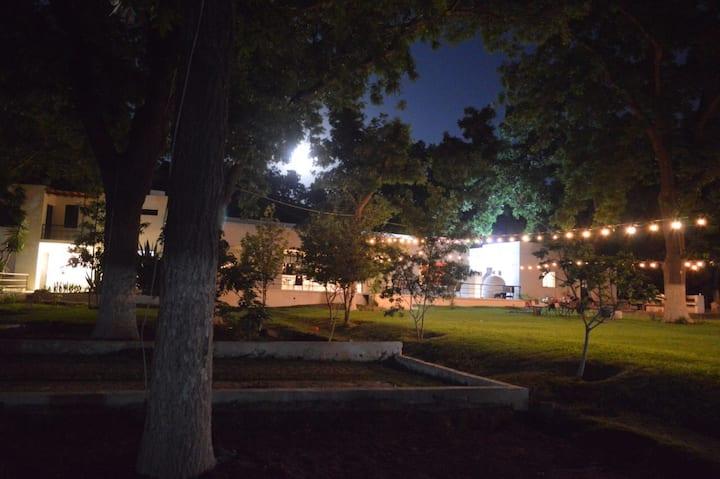 Villa Viñedo, Hacienda kuu
