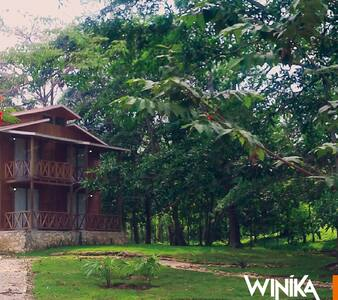 Cabaña en la selva de Palenque - Palenque