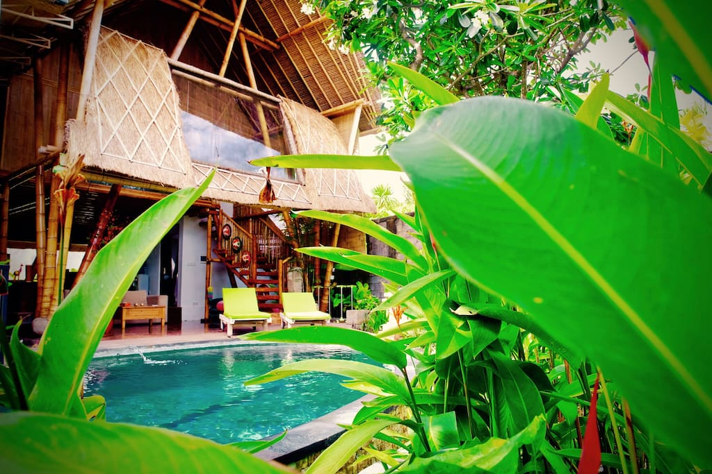 Bamboo house with large pool tropical garden for Traditionelles haus bali