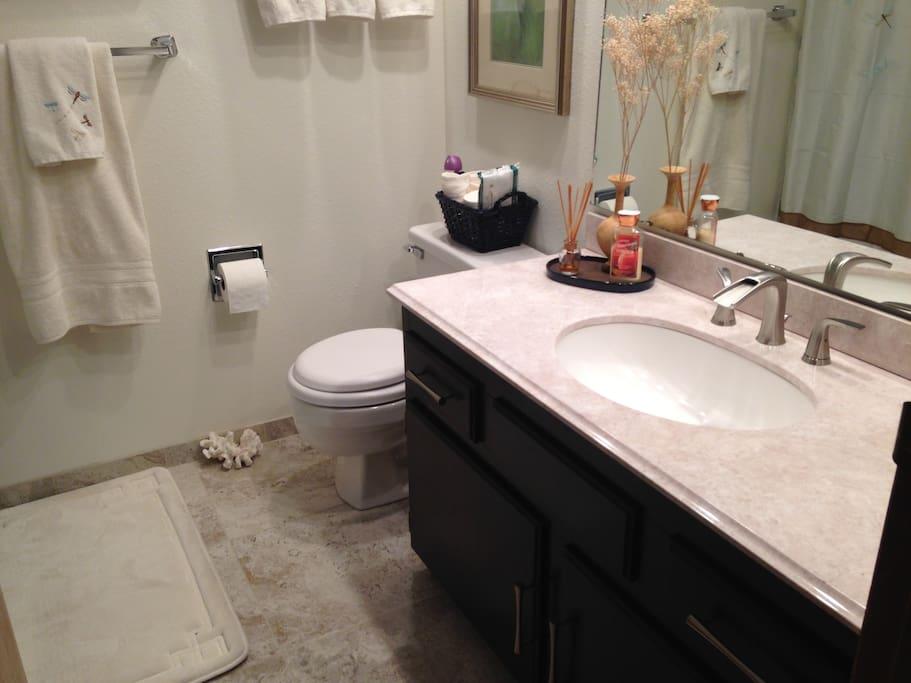 New Guest Bath