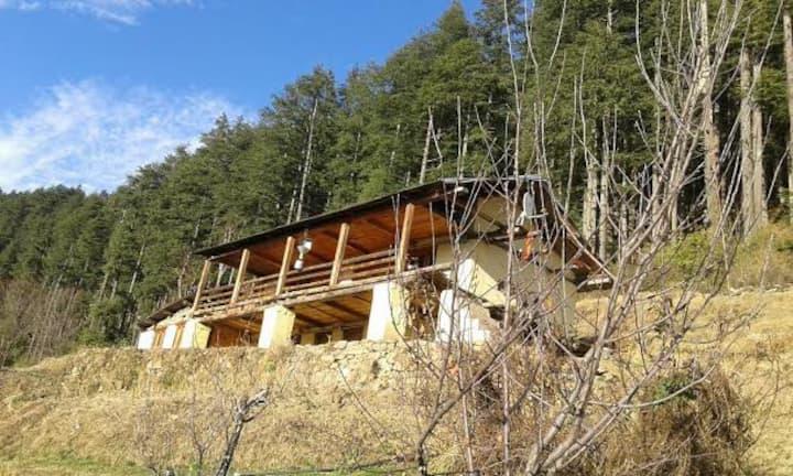 Gaul Himalyan House, Uttarakhand Private Room