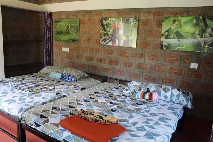 Anirvaa Family Room 2