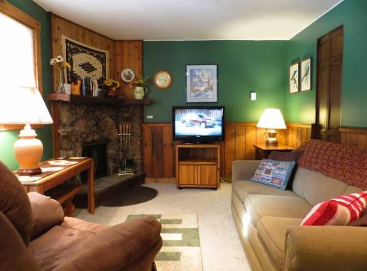 Colorful and Cozy 2 Bedroom, Ground Floor, Indoor Pool and Hot Tub, Game Room