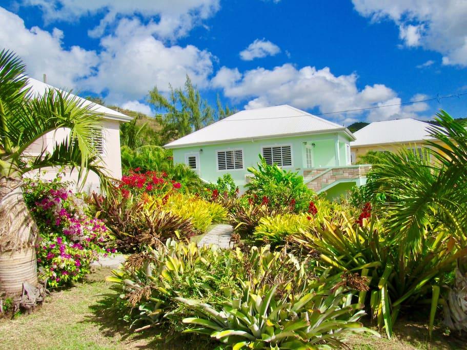 choose any villa
