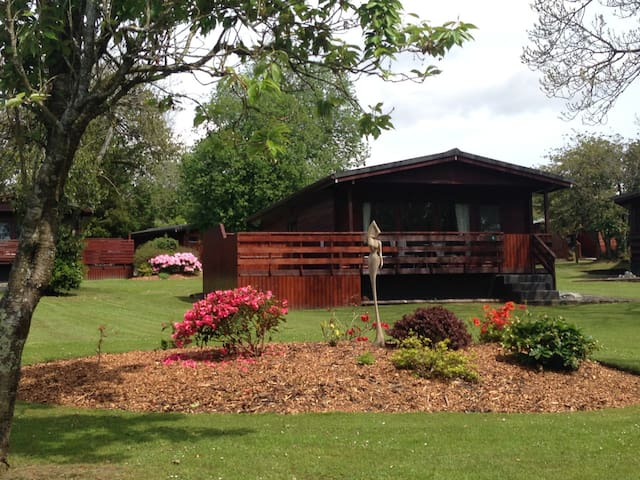 Bluebell Lodge 3 with Hot Tub, Newton Stewart