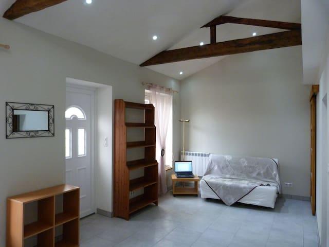 Studio dans maison individuelle 30m2 - Villeurbanne
