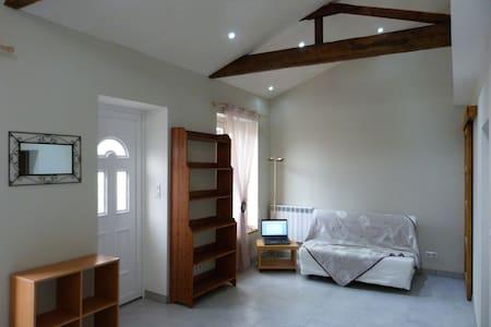 Studio dans maison individuelle 30m2 - Villeurbanne - Ev