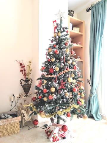 Bonito piso celebra las navidades. Los huéspedes están disfrutando del árbol y de las decoraciones navideñas. Para todas las reservas de diciembre hasta parte de enero. Joyeux Noël. Merry Christmas. Feliz navidad.