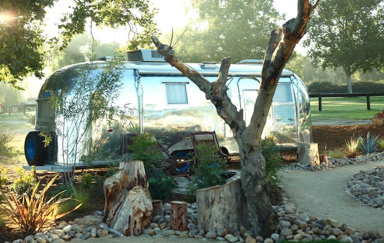 Vintage Airstream at Temecula's Wine Trail #4