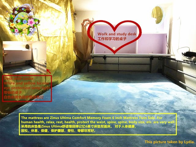 Female Only Dormitory Bed-G