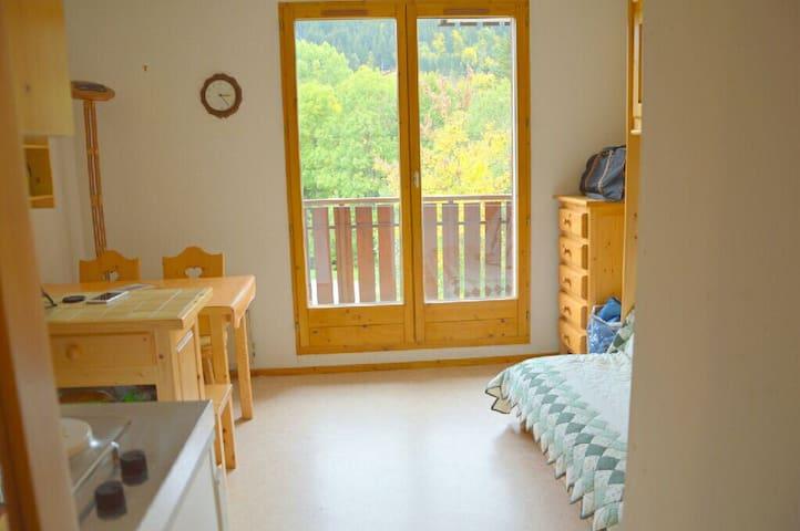 Détente, découverte de la montagne - Bernex - Apartamento