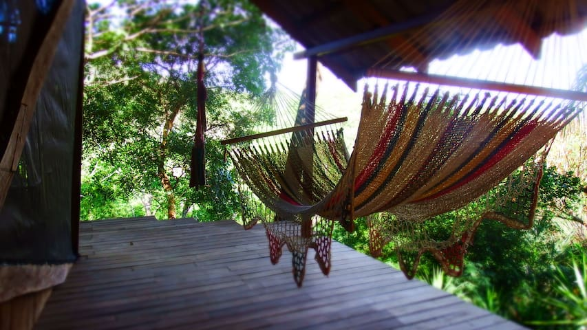 Hammock on the deck in the trees