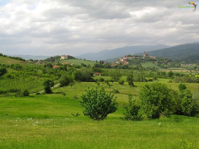 Poggio a Poppi - Villa in the earth of Tuscany - Poppi - วิลล่า
