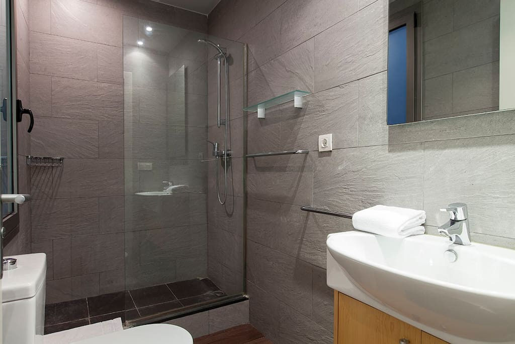 bathroom, shower, toilet, mirror
