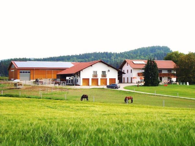 Reiterhof Hexental (Bogen), Ferienhaus 78 qm