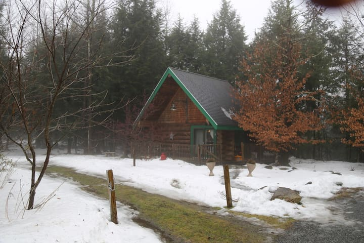 Charming romantic get away real log cabin