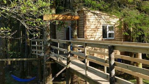 Ox Mountain Tree house