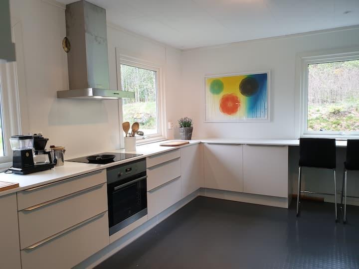 Koronarent hus på Rysstad - Valle kommune.