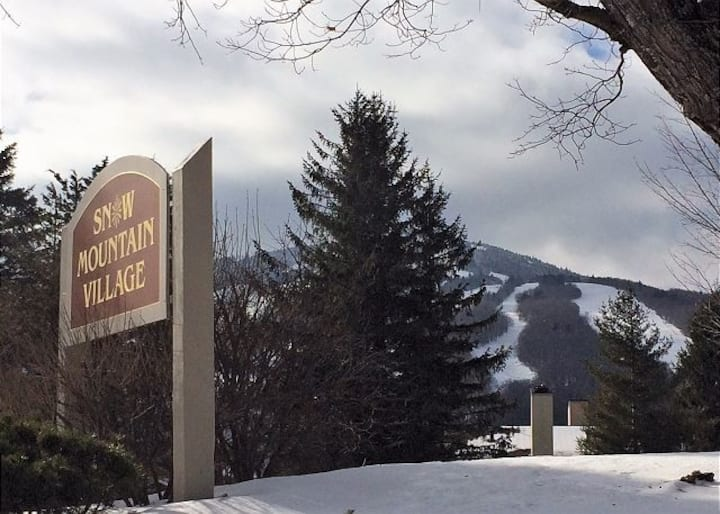 Mount Snow Condo