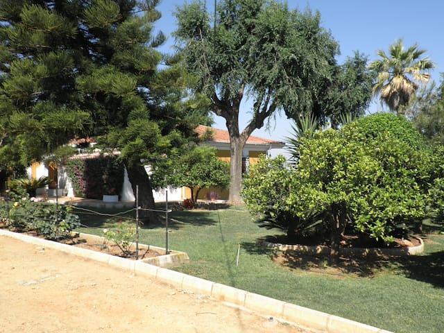 Casa de Campo en Finca de naranjos junto a Sevilla