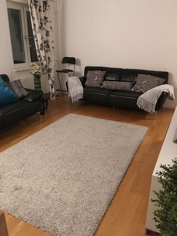 A Cozy Home for 3 to 4 people. - Kävlinge - Huoneisto