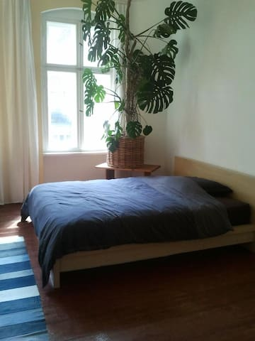 Large, bright guest room, good transport connections and quiet