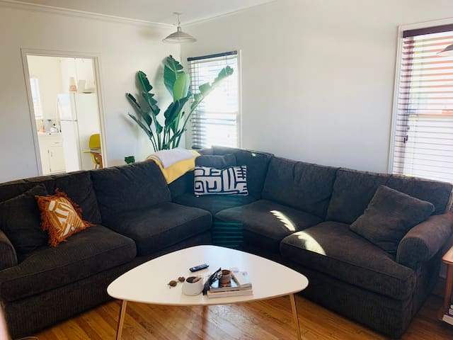 The comfiest couch you've ever sat on.