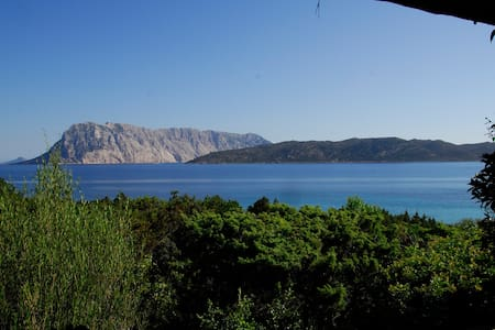 Family summer villa in Coda Cavallo - Cala Suaraccia