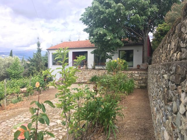 House Quinta in the Douro