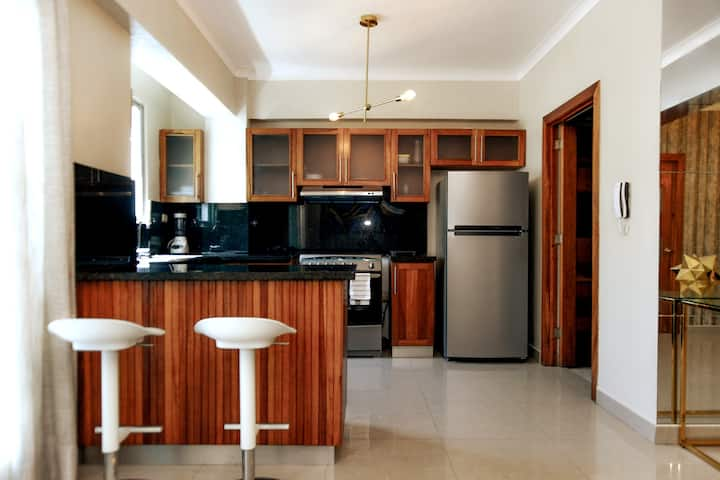 C2 New-Luxury Apartment near Colonial Zone