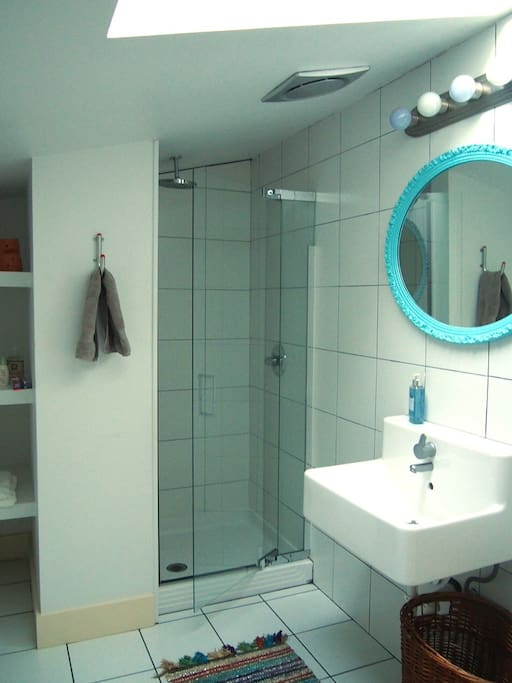 Your own private bathroom with a skylight and rain style shower head.