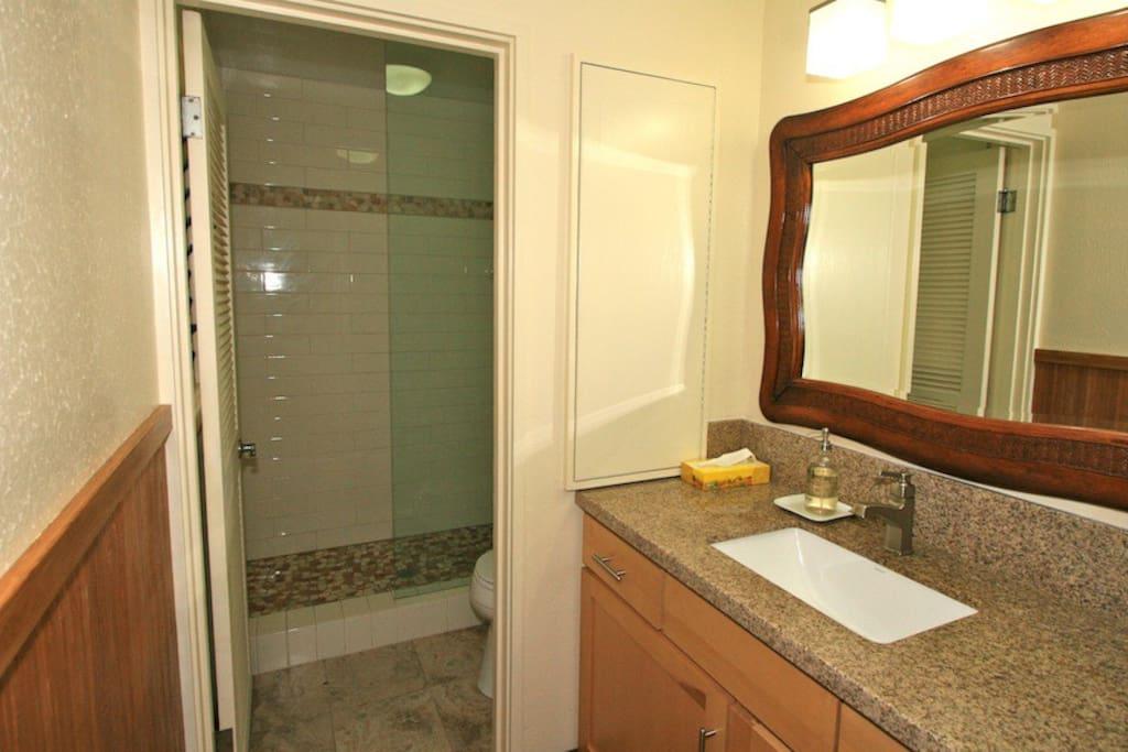 Bath vanity and glass shower