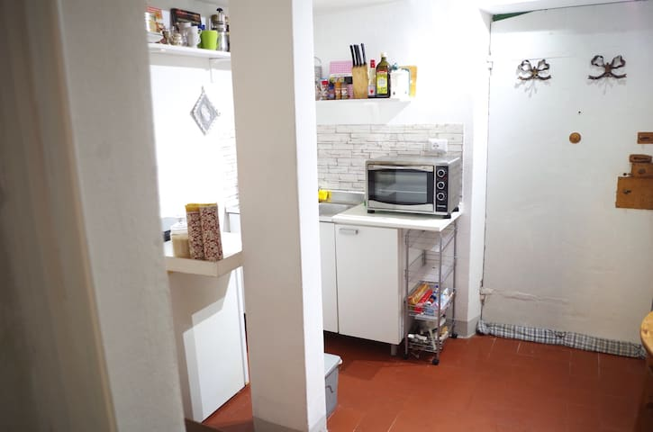 Two beds in centre of Lucca at Via Guinigi - Lucca - Flat