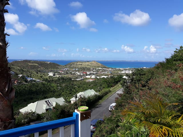 «ZEN & NATURE» Panoramic View