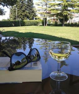 Idealne miejsce wypadowe - Misano Adriatico