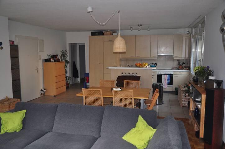 Lumineux 6 pièces en rez de jardin - Onex - Apartment