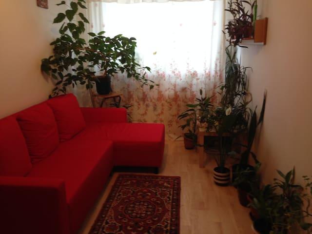 Комнаты посуточно - Prague - Appartement